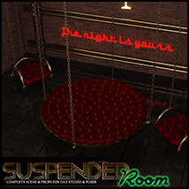 Suspended Room DS and Poser image 5