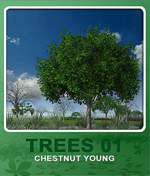 Trees01 chestnut young 3D Models whitemagus