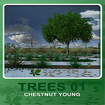 Trees01 chestnut young image 1