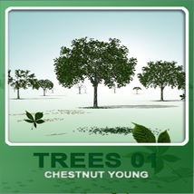 Trees01 chestnut young image 2