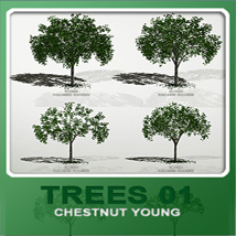 Trees01 chestnut young image 3