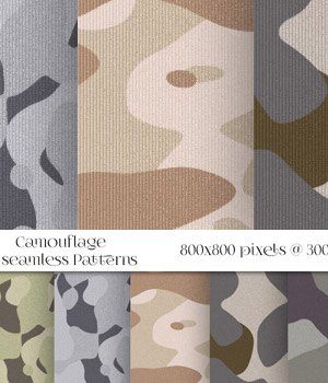 MR- Camouflage 2D Graphics Merchant Resources antje