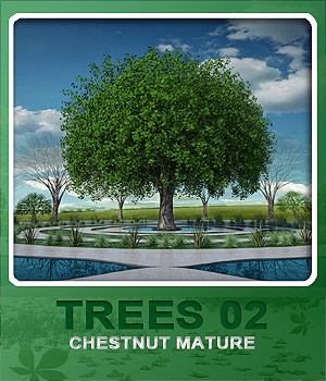 Trees02 Chestnut Mature 3D Models whitemagus