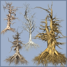 Dead Trees DR 2014-1 - Extended License 3D Models Gaming Extended Licenses Dinoraul