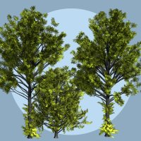 Ulmus hollandica DR - Extended License 3D Models Gaming Extended Licenses Dinoraul