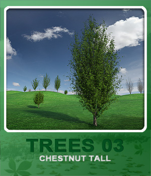 Trees03 Chestnut Tall 3D Models whitemagus