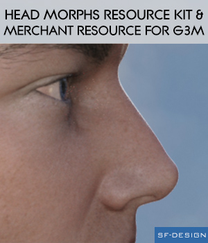 Head Morphs Resource Kit and Merchant Resource for Genesis 3 Males 3D Figure Assets Merchant Resources SF-Design