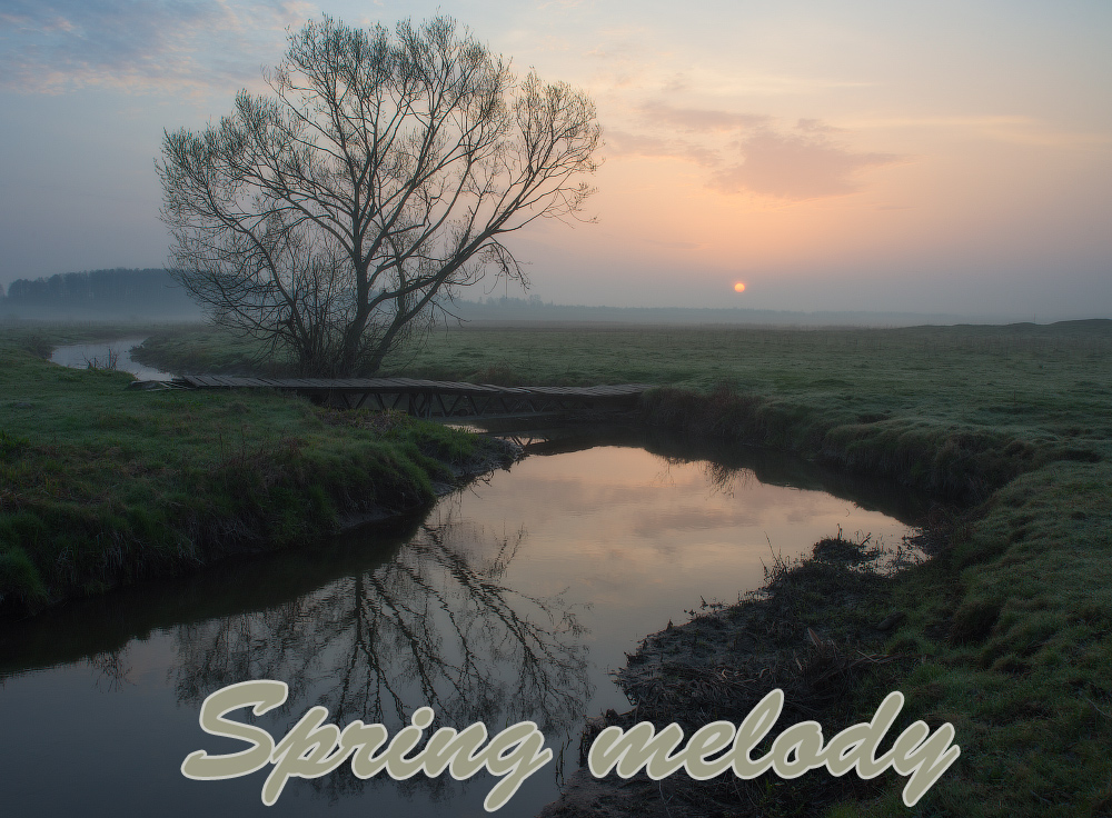 Spring Melody by 1971s