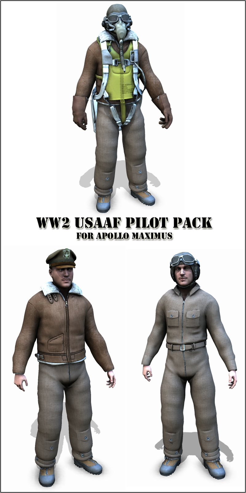 WW2 USAAF pilot pack - Extended License