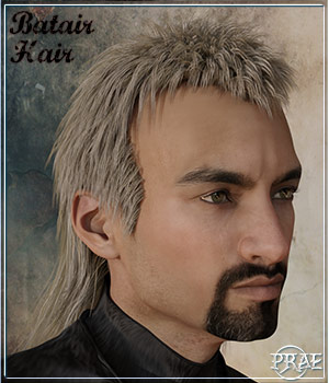 Prae-Batair Hair For Daz 3D Figure Assets prae