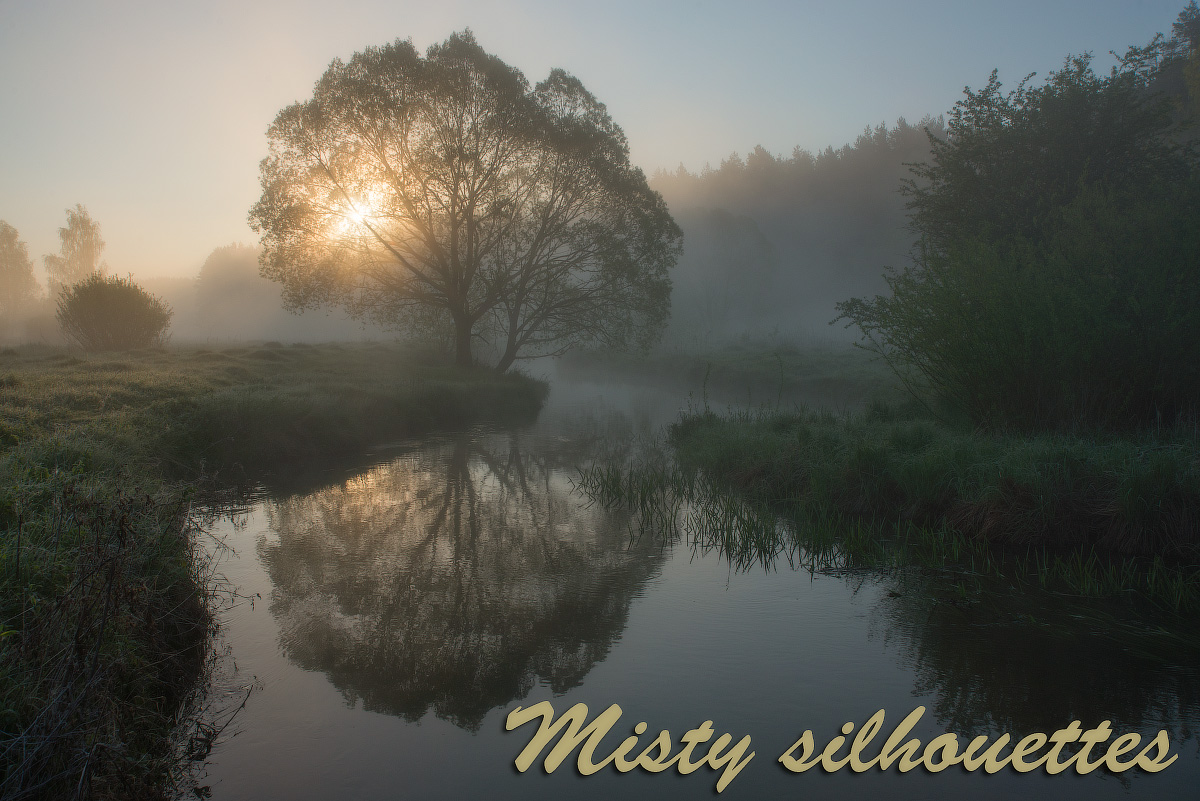 Misty silhouettes