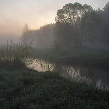 Misty silhouettes image 2
