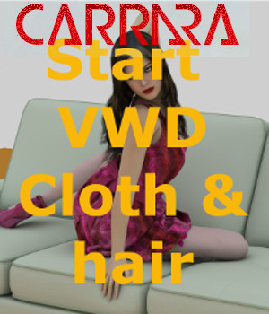 Carrara bridge to VWD Cloth and Hair 3D Software : Poser : Daz Studio : iClone philemot