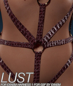 LUST - Exnem Harness 1 for G3 Female 3D Figure Essentials Anagord