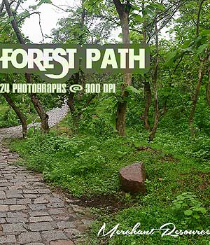 FOREST PATH 2D Merchant Resources RajRaja