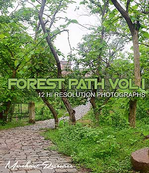 FOREST PATH VOL I 2D Graphics Merchant Resources RajRaja