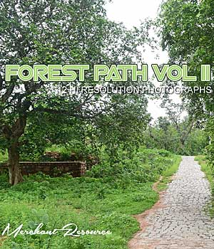 FOREST PATH VOL II 2D Graphics Merchant Resources RajRaja