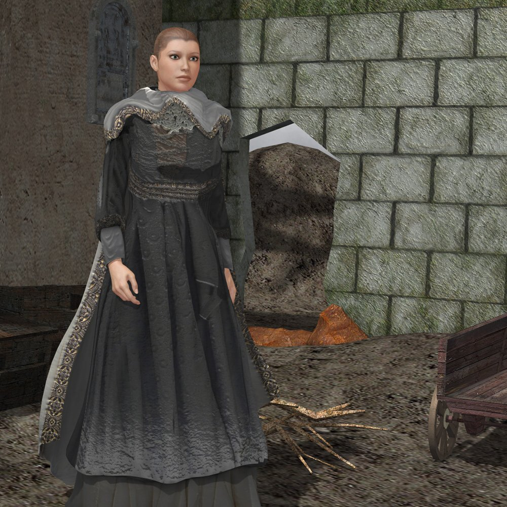 medieval dress c v4 for poser 3d figure assets vanishingpoint. Black Bedroom Furniture Sets. Home Design Ideas
