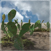 3D Scenery: Dryland Oasis - Extended License image 3