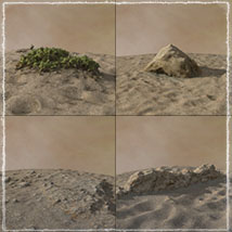 3D Scenery: Dryland Oasis - Extended License image 6