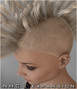 NHC Expansion : Punk Hair 3D Figure Assets P3D-Art