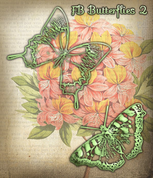 FB Butterflies 2 Brushes, PNGs, Vectors, Shapes - Merchant Resource 2D Merchant Resources fictionalbookshelf