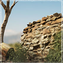3D Scenery: Drywood Ruins - Extended License image 3