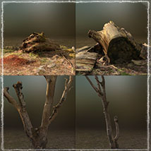 3D Scenery: Drywood Ruins - Extended License image 7