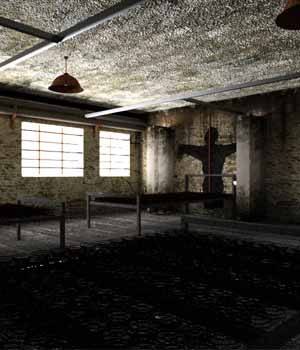 The Asylum Wing 3D Models serum
