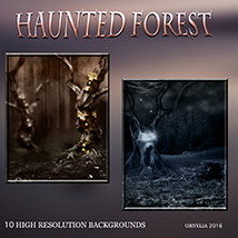 Haunted forest image 1