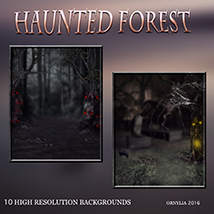 Haunted forest image 2