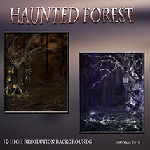 Haunted forest image 3