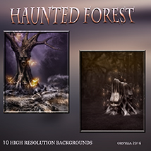 Haunted forest image 4