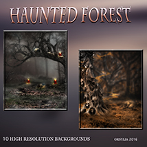 Haunted forest image 5