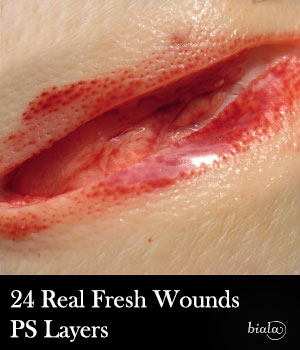 24 Fresh Wounds PS Layers 2D Graphics biala