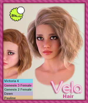 Biscuits Vela Hair 3D Figure Assets Biscuits