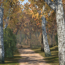 Park and Nature scene - Extended License image 3