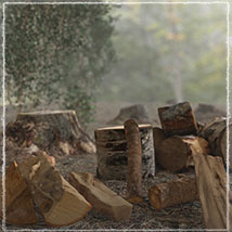 3D Scenery: Woodcutter's Yard image 1