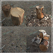 3D Scenery: Woodcutter's Yard image 6