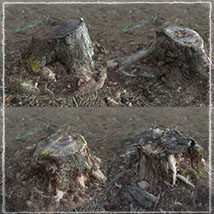 3D Scenery: Woodcutter's Yard image 7
