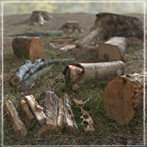 Photo Props: Woodcutter's Yard - Extended License image 2