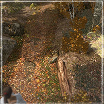 3D Scenery: Autumn Path - Extended License image 3