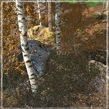 3D Scenery: Autumn Path - Extended License image 4