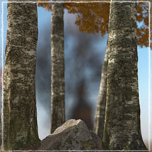 3D Scenery: Autumn Path - Extended License image 5