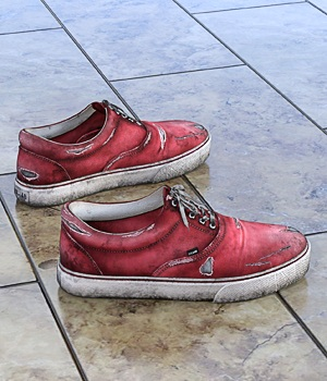 Canvas Shoes For G3F 3D Figure Assets hitman47