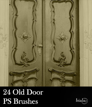 Old Door PS Brushes 2D Graphics biala