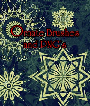 Ornate Brushes and PNG's 2D Graphics Merchant Resources antje