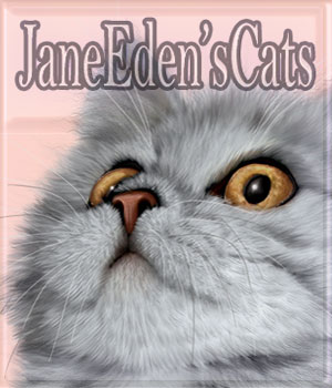 JaneEdens Cats 2D Graphics JaneEden