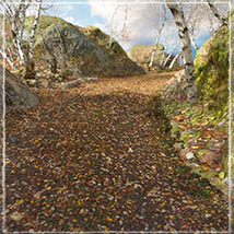 3D Scenery: Autumn Road - Extended License image 3