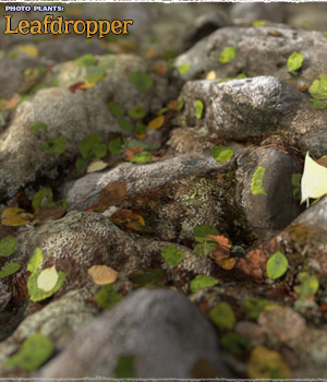 Photo Plants: Leafdropper 3D Figure Assets 3D Models ShaaraMuse3D